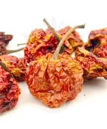 Domácí olej s chilli – recept zdarma