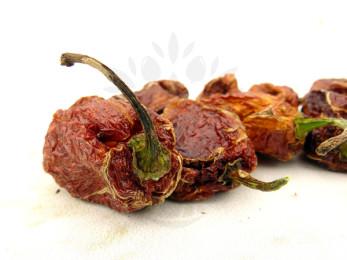 Sušené papričky Habanero 4 ks