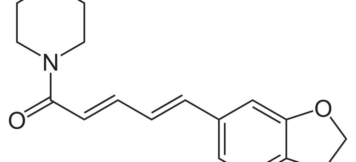Kapsaicin, tajemství chilli papriček