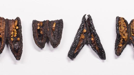 Tajemné papričky chipotle aneb nahuatl