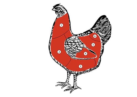 Celé kuře