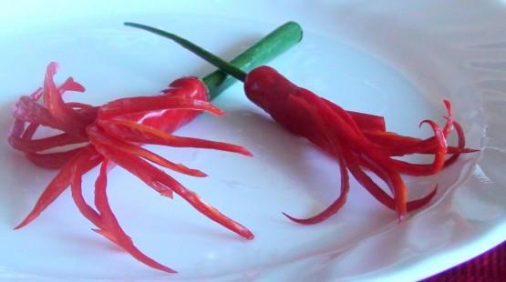 Chilli a DIY – vyrobte si chilli květy