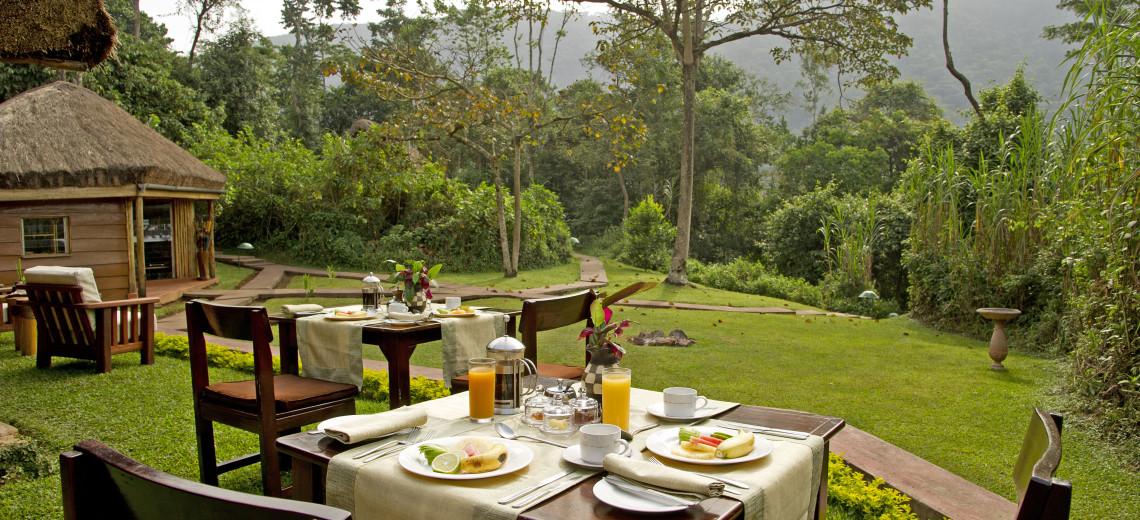 Snídaně v zeleném